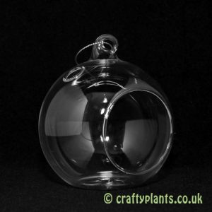 10cm-glass-ball-terrarium-155-p