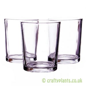 5.5cm glass pots pack of 3 for airplants by craftyplants