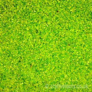 green-sand-250g-1542-p