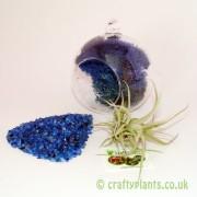hanging-glass-ball-airplant-terrarium-kit-c-[3]-1516-p