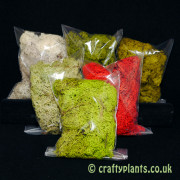 reindeer-moss-6-colour-selection-pack-25g-x-6--1257-p