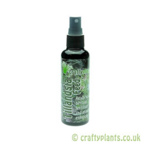 Craftyplants Tillandsia Feed 100ml airplant fertiliser spray