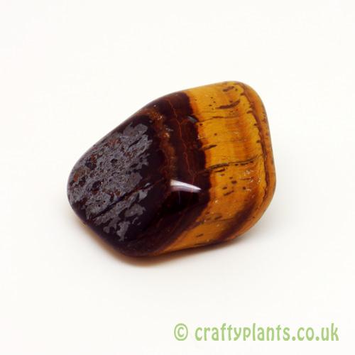 Tigers Eye Tumblestone in gemstones from Craftyplants
