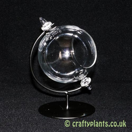 8cm globe terrarium on stand by craftyplants.co.uk