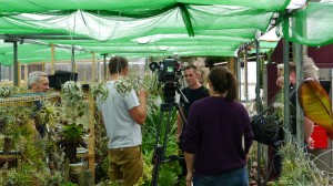 Air Plants on BBC Gardeners' World