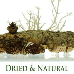 Dried & Natural