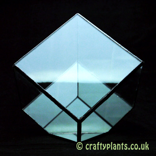 rear view of 15cm geometric glass terrarium by craftyplants.co.uk