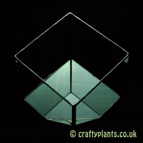 15cm geometric glass terrarium by craftyplants