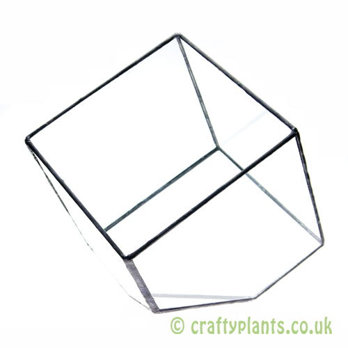 15cm geometric glass terrarium by craftyplants