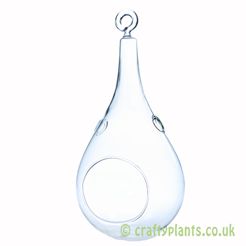 9x20cm pear shaped terrarium by craftyplants.co.uk