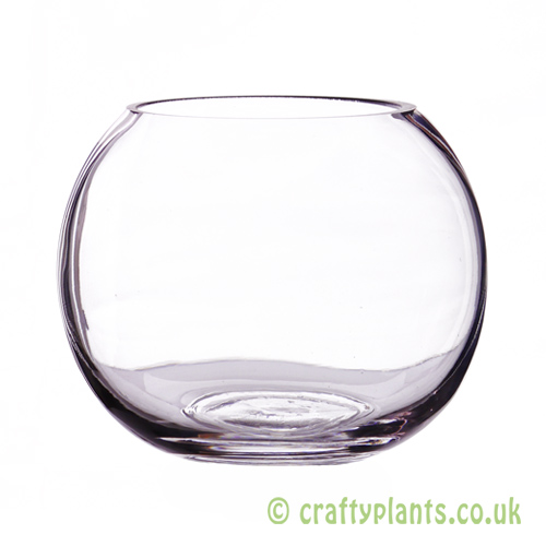 12.5cm glass fishbowl by craftyplants.co.uk