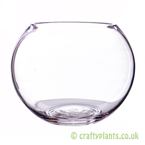15cm glass fishbowl by craftyplants.co.uk