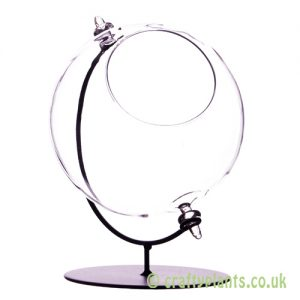 15cm large glass globe terrarium with stand great for airplants by craftyplants