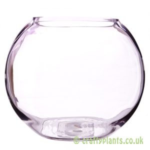 20cm glass fishbowl from craftyplants.co.uk