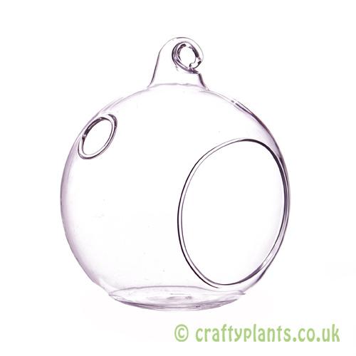 An 8cm glass ball terrarium from craftyplants