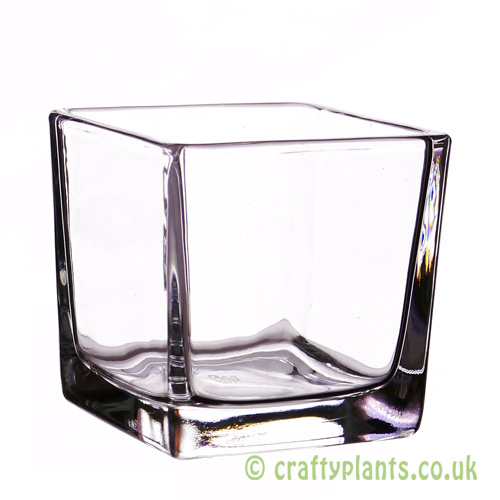 8cm glass cube by craftyplants